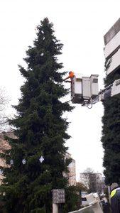 Archiv Quartiersmanagement Hasenleiser,Weihnachtsbaum_2017